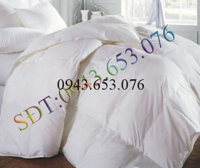 Chan long cuu uc Living @ home 500GSM